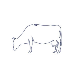 hand drawn cow isolated on white background vector image vector image