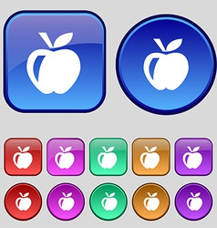 Apple icon sign A set of twelve vintage buttons vector image
