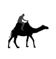 Black and white silhouette a camel with a vector