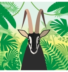 Black Buck on the Jungle Background vector