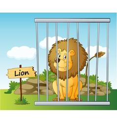 Cartoon Zoo Lion vector image