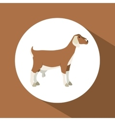 Colorful goat animal design vector