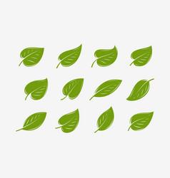 Green leaf icon set natural organic logo vector