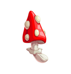 Poisonous mushroom cartoon amanita icon vector