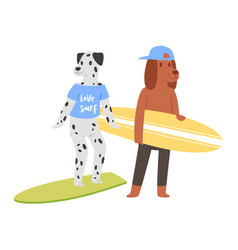 surf cat dog animal surfer character vector image