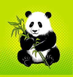 panda bear with bamboo pop art style vector image vector image
