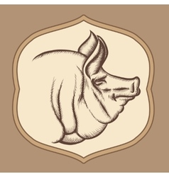 Pig head in engraving style vector image