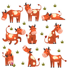 Brown spotted cow set farm animal character in vector