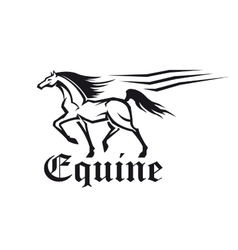 Equestrian sporting symbol of running racehorse vector