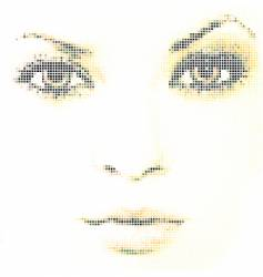 Face mosaic vector