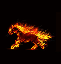 Fire burning horse of running on black background vector