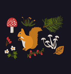 forest objects set vector image