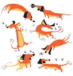 funny happy dachshunds playing with insects vector image