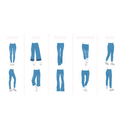 jeans types every type has two shoes variants vector image