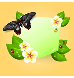 Note with leaves insects flowers vector image