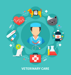 pet care concept vector image
