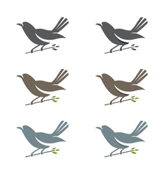 Set of of spring birds in branches with leaves vector image