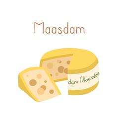 Waxed holland cheese wheel maasdam and cut vector
