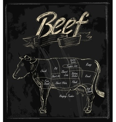 hand drawn beef vector image