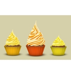 The set of three prize-winning cupcakes vector image