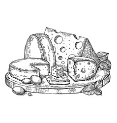 plate cheese engraving style vector image