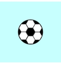 Soccer ball with black and white hexagons sport vector image vector image