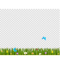 green realistic grass border with flowers and vector image