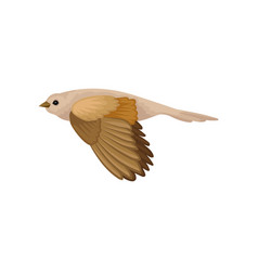 Beautiful songbird in flying action winter bird vector