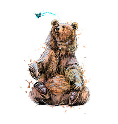 Brown bear sitting and playing with butterfly from vector
