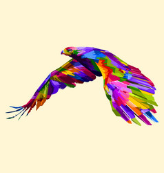 Colorful flying eagle vector