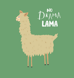 Cute lama with lettering no drama lama cartoon vector