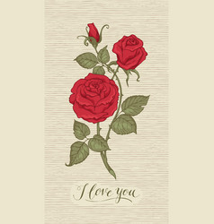 Greeting card with inscription i love you vector