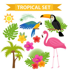 tropical icon set with birds and flowers flat vector image