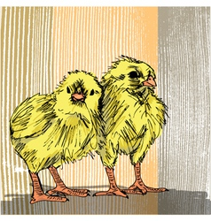 Hand draw sketch of a chick vector image vector image