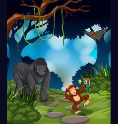 Ape in the rainforest vector