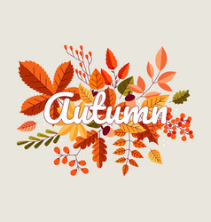 autumn background fall composition with yellow vector image