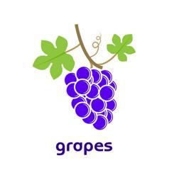 common grape vine icon logo vector image