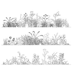field flowers and grass landscape set line art vector image