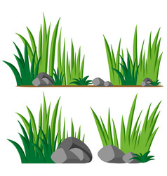 gardening theme with seamless grass vector image