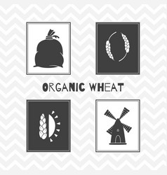 Hand drawn silhouettes wheat or flour posters vector