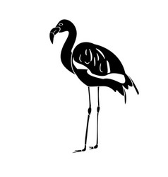 Isolated flamingo silhouette vector
