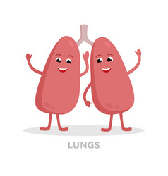 Strong healthy lungs cartoon character isolated on vector