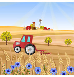 tractor at the farm wheat vector image