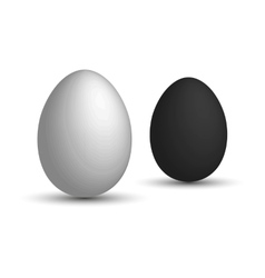 Set a realistic 3D eggs White egg and black egg vector image vector image