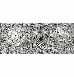 cheetahs and zebra and pattern background vector image