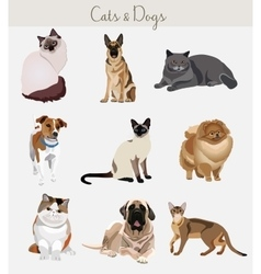 Dogs and cats set Different types isolated vector image