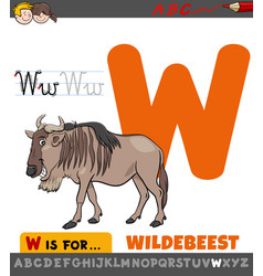 Letter w educational worksheet with wildebeest vector