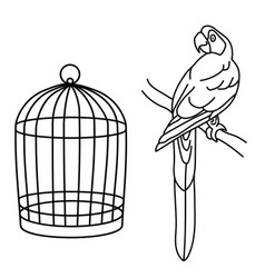 Outline drawing macaw parrot and cage line vector