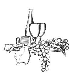 wine still life isolated on white background hand vector image