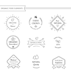 Organic food labels and elements vector image vector image